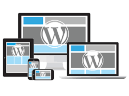Why WordPress hosting requires getting professional services?